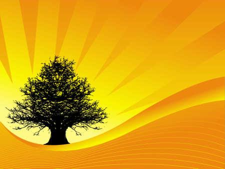 Abstract vector illustration of tree on sunset background  illustration