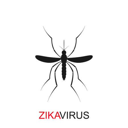 aedes: Zika mosquito vector. Zika virus alert. Zika virus concept. Zika virus mosquito bite. Mosquito logo. Aedes Aegypti isolated on white background. Illustration