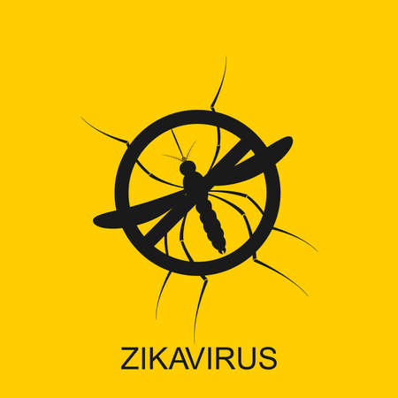 Zika mosquito vector. Virus alert. Aedes Aegypti isolated on yellow background.