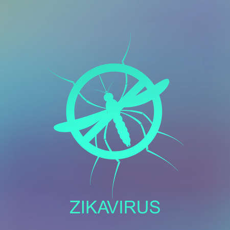 aedes: Zika mosquito vector. Virus alert. Aedes Aegypti isolated on blue background. Illustration