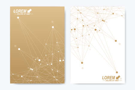 advert: Modern vector template for brochure Leaflet flyer advert cover catalog magazine or annual report. A4 size. Business, science, medical design. Golden cybernetic dots. Lines plexus. Card surface Illustration