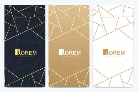 Chocolate bar packaging set. Trendy luxury product branding template with label pattern for packaging. Abstract golden package with texture background and golden geometric lines. Vector illustration
