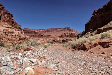 obstruction: USA - Utah - Poison Spring Wash Road