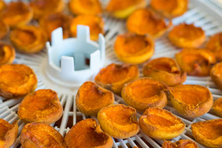 Dried Apricots on a table Food dryer white color Stock Photo