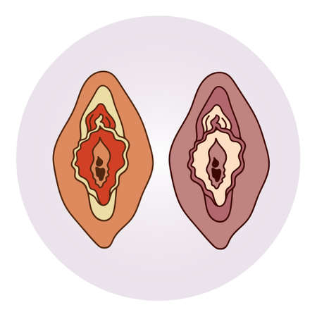 Concept flat illustration of the woman's reproductive organ. Symbol of feminism or woman's health. - Vector