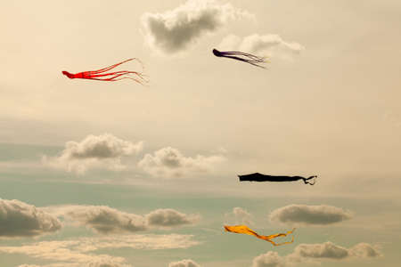 Kites flying in the cloudy sky. Retro style. (Toned photo.) photo