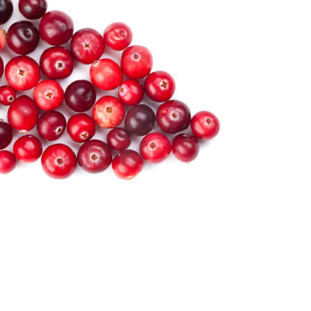 cranberry fruit: Red, ripe cranberries macro view on white background Stock Photo