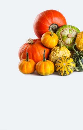 pumpkin soup: colorful halloween pumpkin on white background Stock Photo