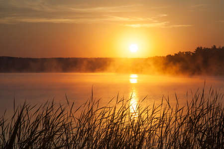 innate: Sunrise on the lake. Early morning landscape. mist on the water, forest silhouettes and the rays of the rising sun. Stock Photo