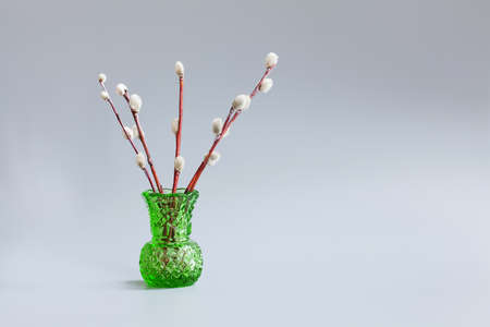 cutglass: Green vase with twigs of willow on a gray background. Palm Sunday holiday concept, pussy-willow tree branches. Stock Photo