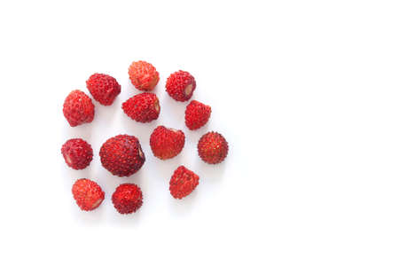 fragaria: Wild strawberries on white background. Red ripe berries Fragaria. closeup