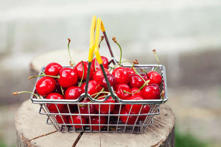 Shopping bag full of ripe red strawberries. Summer harvest on tree stump background, Shallow depth field, selective focus.