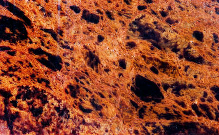 Obsidian mineral stone texture pattern macro view. Beautiful volcanic glass dark-red brown color with black spots background 스톡 콘텐츠