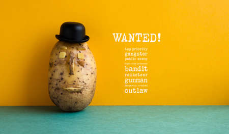 Wanted top priority potato gangster poster. Old fashioned style bowler black hat potato yellow wall, green floor. Text message public enemy prisoner bandit racketeer gunman dangerous criminal outlaw