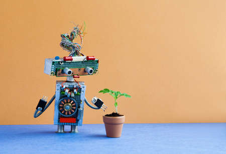 Organic versus artificial inorganic concept. Robot examines a living plant in a clay flower pot. Brown wall blue floor background, copy space