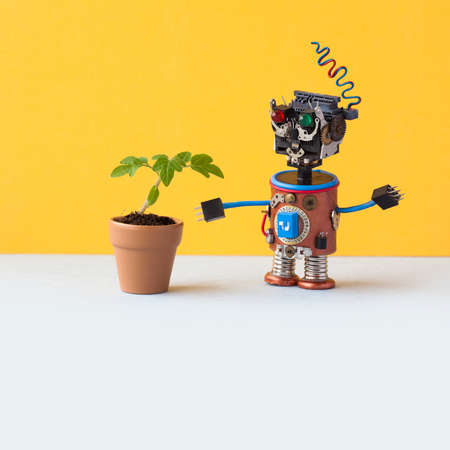 Robot explores a living green plant in a flower clay pot. Artificial intelligence versus organic life plant. Yellow wall background, white floor. Copy space