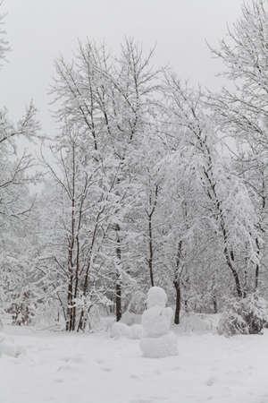 눈사람, 눈 덮힌 나무 풍경. 공원, 겨울 날씨 장면에서 눈. 회색 날 하늘. 스톡 콘텐츠 - 107554611