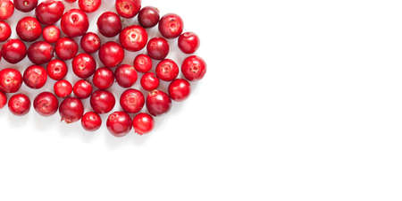 Tasty red berries Vaccinium vitis-idaea cowberries isolated on white background. Copy space.
