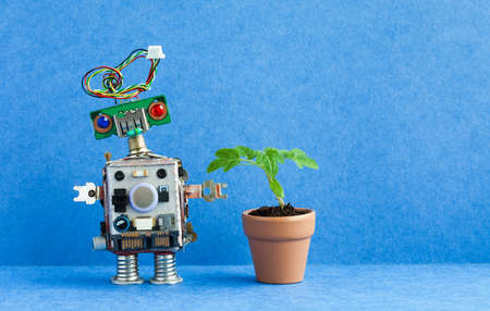 Robot and flowerpot. Creative design robotic character with green plant housepot . Blue background, copy space 版權商用圖片 - 113928371