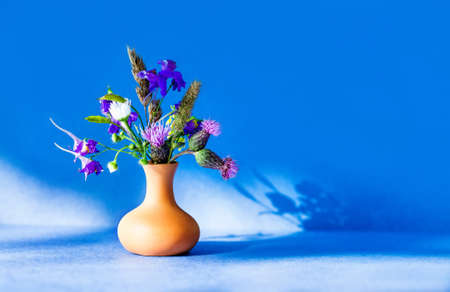 Wild flowers bouquet, brown clay vase on blue background. Summer time sunny day floristic still life photo. Shallow depth of field, copy space 免版税图像
