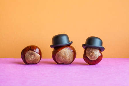 Funny family horse chestnut seeds with black hats. Buckeye fruits Aesculus hippocastanumon on brown violet background. Stock Photo