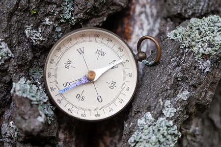 Ancient magnetic exploration compass on a background of pine tree bark. Retro navigator tool for sports and tourist orienteering in the wild forest nature.