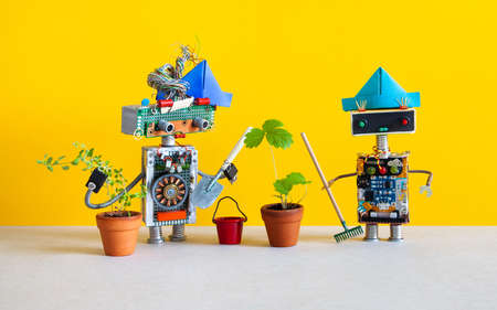 Robotics automation gardening concept. Two funny gardeners with a shovel, a bucket and a rake stand next to plants in flower pots. Yellow gray background.