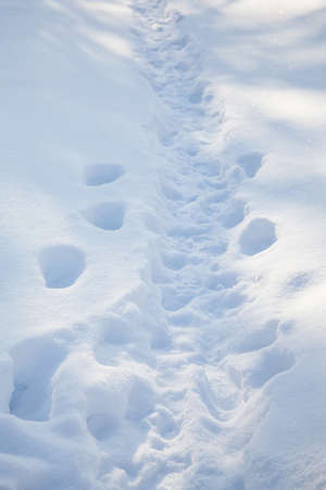 Snow path with footprints. Snowy winter background. Cold weather scene.