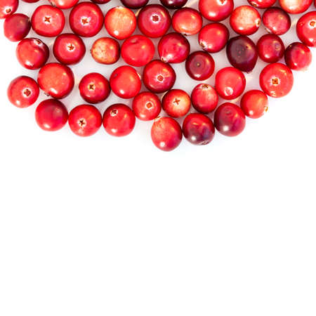 Natural forest cranberry. Red, ripe cranberries macro view. white background. copy space. up view.
