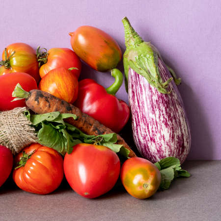 Vegetables still life scene. Farm aubergine eggplants, tomatoes of various grade, bell peppers, carrot on a pink gray background Imagens