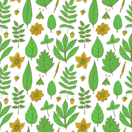 Vector seamless pattern with flowers, leaves and berries. Natural floral hand drawing texture.