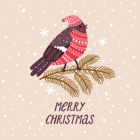 Vector winter background with cute bullfinch in hat and sweater. Holiday poster with cartoon character and text Merry Christmas. Vintage illustration with bird.