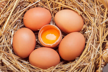 laid: The eggs which are laid out in a basket with hay, a basket with crude eggs in a dry grass by Easter. Stock Photo