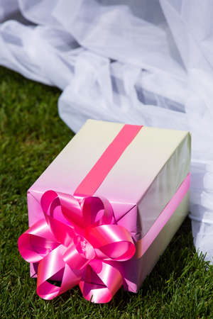 festively: The box with a gift festively packed also lies on a green lawn.