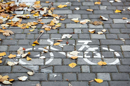Bicycle symbol drawn on the sidewalk for a bicycle covered with yellow autumn leaves, closeup of a bicycle track designation. Imagens - 114114743