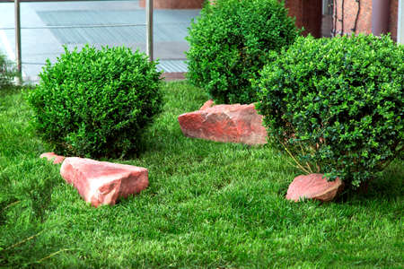 decorative stones in a flowerbed with a green lawn and with bushes a landscape design of urban style.