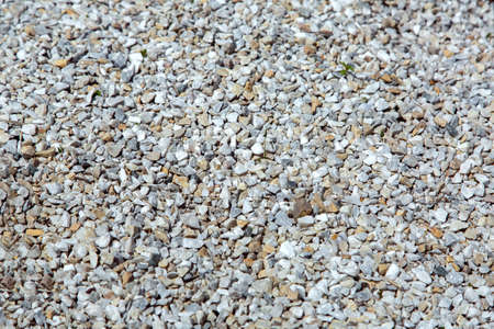 The texture of the surface studded with small pebbles is a closeup of mulching with pebbles.