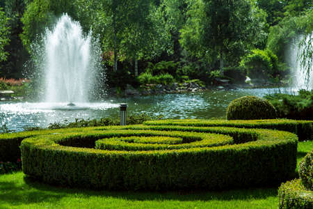 boxwood hedge in the form of a spiral in the background a pond with a fountain and green trees. Stok Fotoğraf