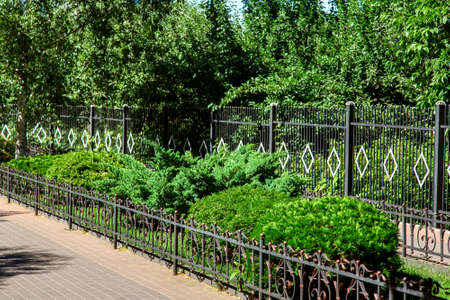 walkway with flowerbed fenced wrought iron fence with green bushes in the background high iron fence and a garden with trees. Banque d'images - 119363530