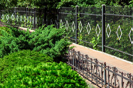 walking path fenced with an iron fence with greenery on a sunny day in the garden. Banque d'images - 119363532
