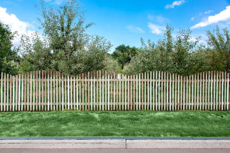 apple orchard behind a wooden fence at the side of the asphalt road with a curb and drainage system and green lawn. Reklamní fotografie