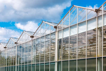 glass greenhouse facade against a blue sky with clouds, building for growing vegetables year round agriculture.