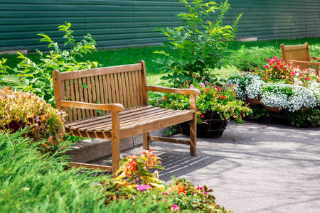 wooden bench for relaxing in a park with plants and flowers in flowerpots on asphalt near a green lawn on a sunny summer day in the backyard. Reklamní fotografie