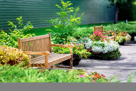wooden bench in a park with flowers in flowerpots on asphalt near a green lawn on a sunny summer day in the garden.
