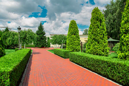 pedestrian pavement from paving slabs in the backyard of the building with a hedge of thuja bushes and other plants with white clouds in the blue sky. Reklamní fotografie