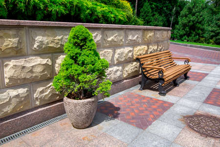 a stone flowerpot with an evergreen tree near a wooden bench and a stone wall with a rustication in the park with a pedestrian sidewalk made of stone and granite tiles and green plants.