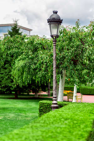 an iron lamppost with a pattern and a lantern with a glass shade in a garden with plants and hedges from an evergreen thuja trimmed with a square. Stok Fotoğraf