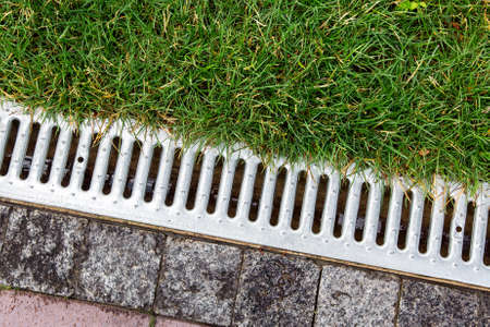 iron grate of a storm drainage system on the side of a footpath made of pavers near a green lawn top view with rain water.