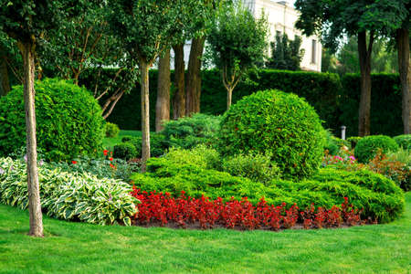 Landscaping of flower beds with flowers and green bushes with trees in the summer garden, a lot of different plants.