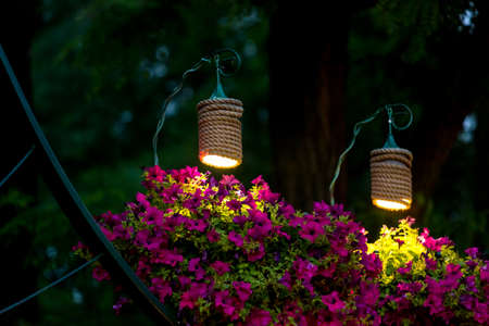 two decorative lanterns for lighting hanging flowerpots with petunia flowers in the evening garden of the backyard, a closeup of the night scene of landscaping nobody.